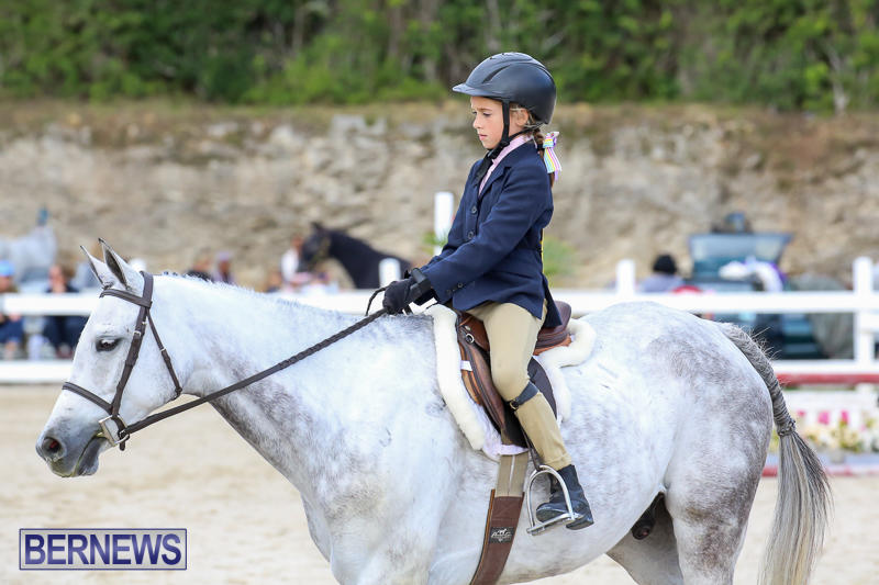 RES-Horse-Show-Bermuda-January-21-2017-18