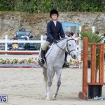 RES Horse Show Bermuda, January 21 2017-19