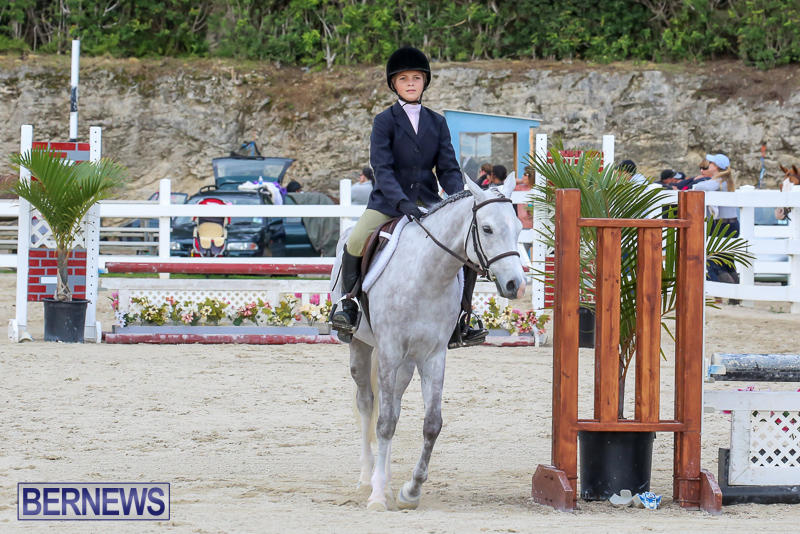 RES-Horse-Show-Bermuda-January-21-2017-19