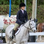 RES Horse Show Bermuda, January 21 2017-2