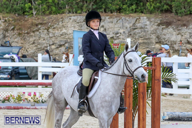 RES-Horse-Show-Bermuda-January-21-2017-20