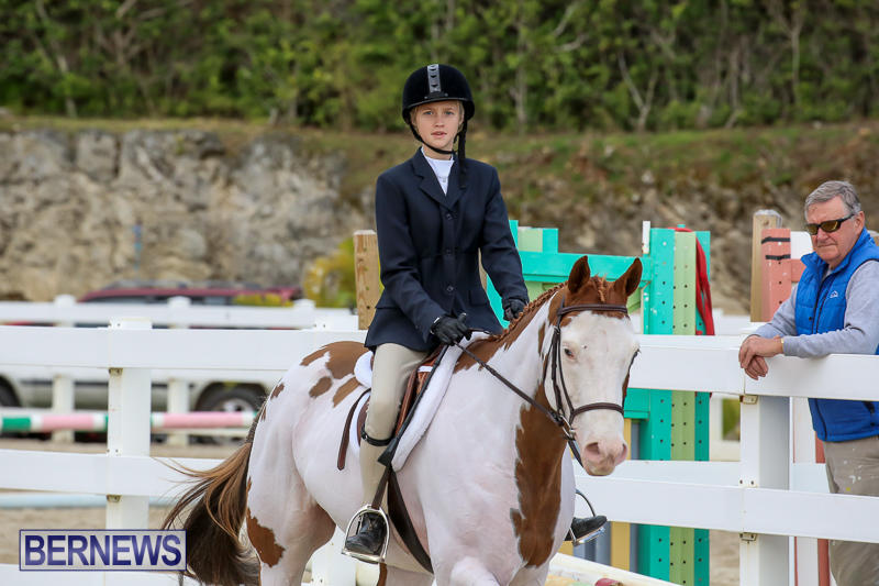 RES-Horse-Show-Bermuda-January-21-2017-21