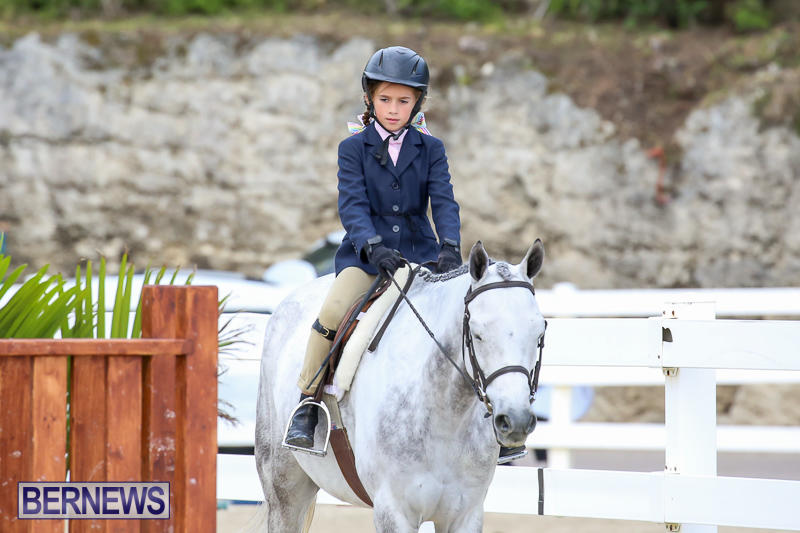 RES-Horse-Show-Bermuda-January-21-2017-23