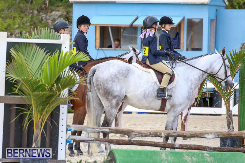 RES-Horse-Show-Bermuda-January-21-2017-24