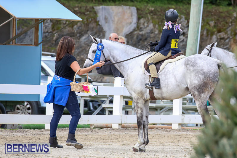 RES-Horse-Show-Bermuda-January-21-2017-26