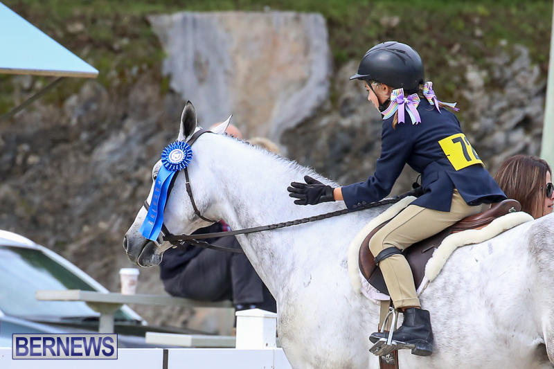 RES-Horse-Show-Bermuda-January-21-2017-27