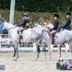 RES Horse Show Bermuda, January 21 2017-28