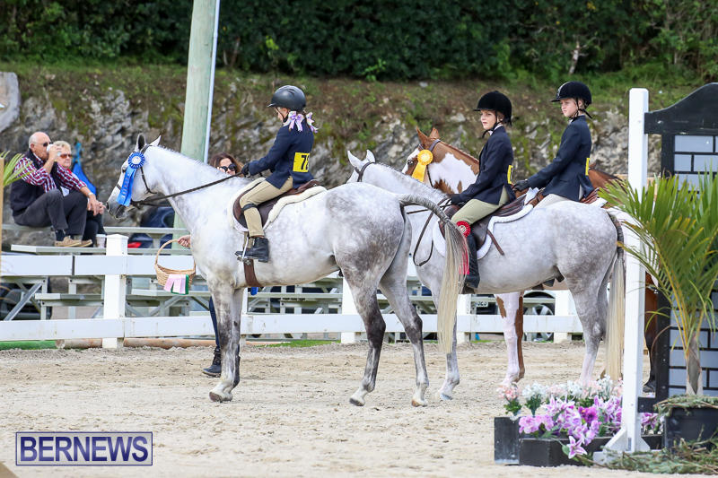 RES-Horse-Show-Bermuda-January-21-2017-28
