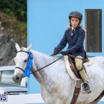 RES Horse Show Bermuda, January 21 2017-29