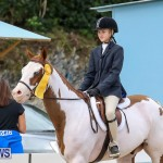 RES Horse Show Bermuda, January 21 2017-30