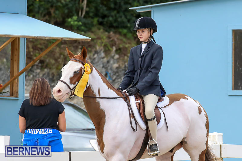 RES-Horse-Show-Bermuda-January-21-2017-30