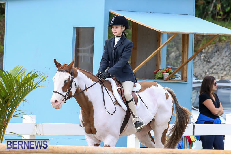 RES-Horse-Show-Bermuda-January-21-2017-32