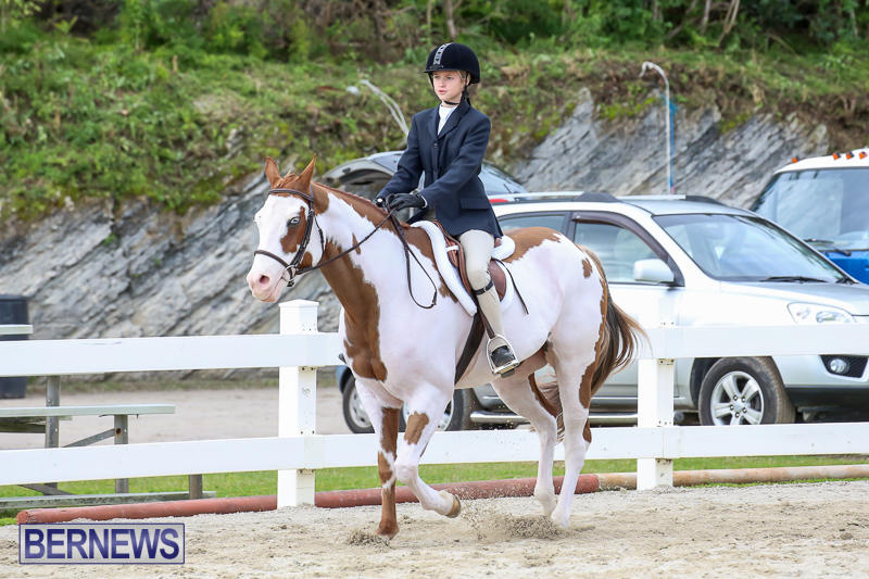 RES-Horse-Show-Bermuda-January-21-2017-33