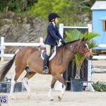 RES Horse Show Bermuda, January 21 2017-34