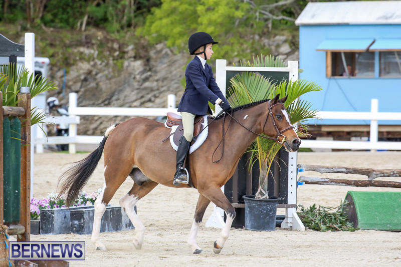 RES-Horse-Show-Bermuda-January-21-2017-34
