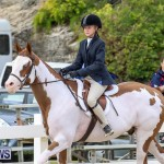RES Horse Show Bermuda, January 21 2017-35