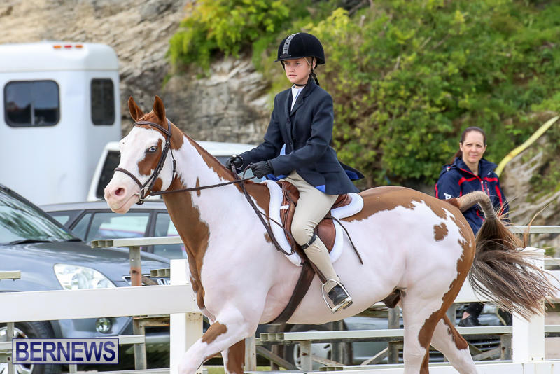 RES-Horse-Show-Bermuda-January-21-2017-35