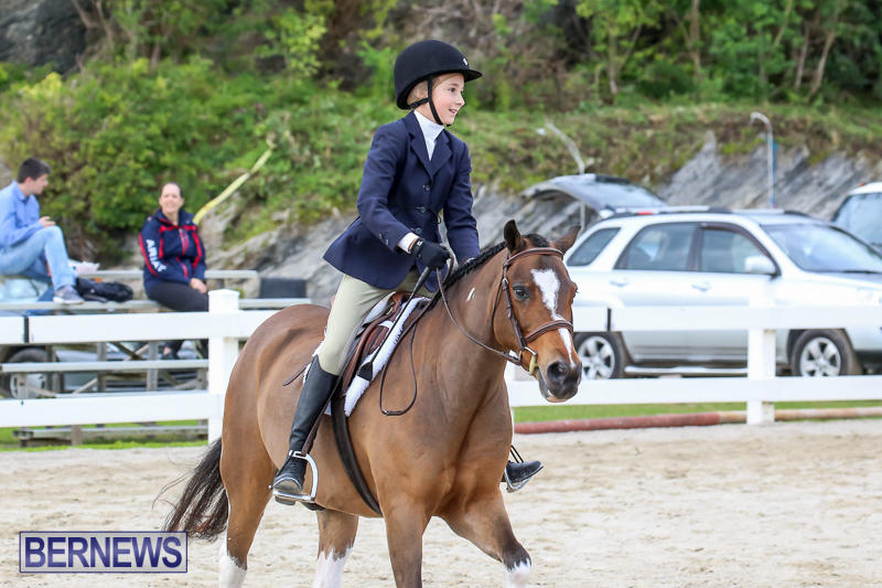 RES-Horse-Show-Bermuda-January-21-2017-36