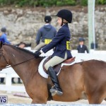 RES Horse Show Bermuda, January 21 2017-37