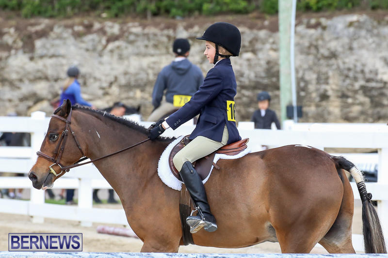 RES-Horse-Show-Bermuda-January-21-2017-37