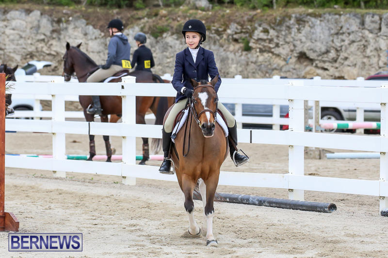 RES-Horse-Show-Bermuda-January-21-2017-38