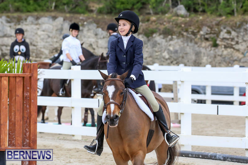 RES-Horse-Show-Bermuda-January-21-2017-39