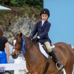 RES Horse Show Bermuda, January 21 2017-42