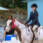 RES Horse Show Bermuda, January 21 2017-43