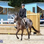 RES Horse Show Bermuda, January 21 2017-46