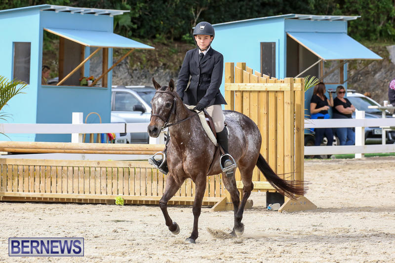 RES-Horse-Show-Bermuda-January-21-2017-46