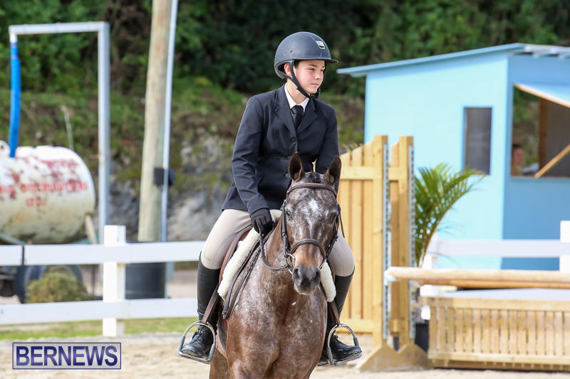 RES-Horse-Show-Bermuda-January-21-2017-47