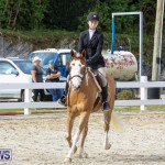 RES Horse Show Bermuda, January 21 2017-48