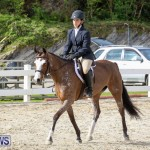 RES Horse Show Bermuda, January 21 2017-49