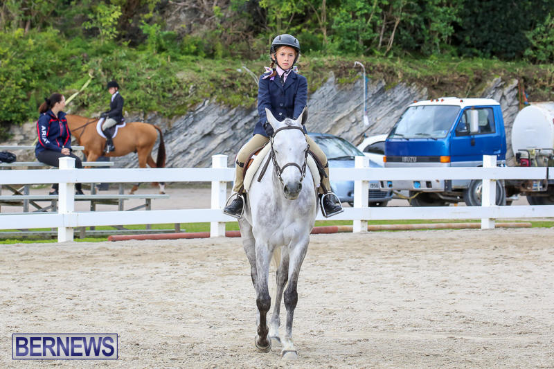 RES-Horse-Show-Bermuda-January-21-2017-5