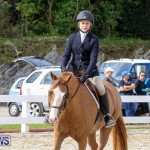 RES Horse Show Bermuda, January 21 2017-51
