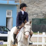 RES Horse Show Bermuda, January 21 2017-53