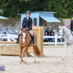 RES Horse Show Bermuda, January 21 2017-56