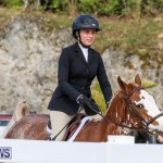 RES Horse Show Bermuda, January 21 2017-57