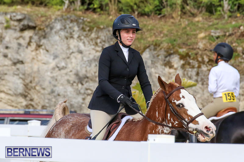RES-Horse-Show-Bermuda-January-21-2017-57
