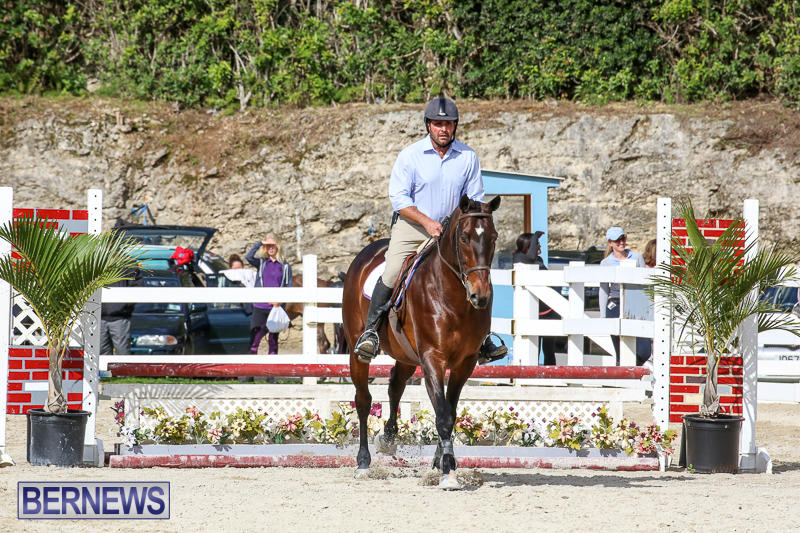 RES-Horse-Show-Bermuda-January-21-2017-58