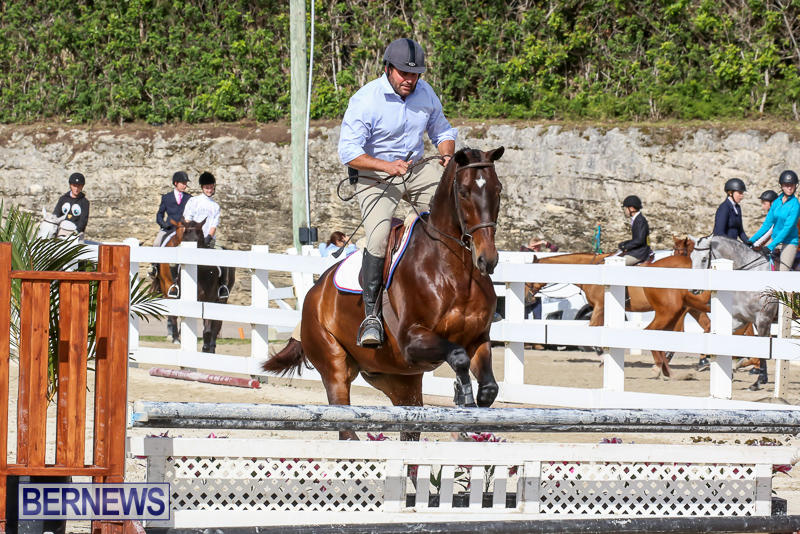 RES-Horse-Show-Bermuda-January-21-2017-59
