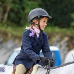 RES Horse Show Bermuda, January 21 2017-6
