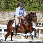RES Horse Show Bermuda, January 21 2017-60