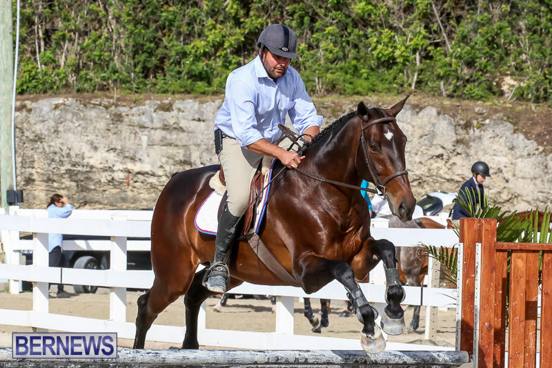 RES-Horse-Show-Bermuda-January-21-2017-60