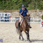 RES Horse Show Bermuda, January 21 2017-66