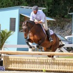 RES Horse Show Bermuda, January 21 2017-68