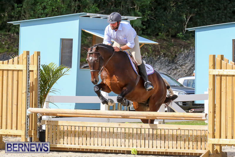 RES-Horse-Show-Bermuda-January-21-2017-68
