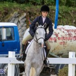 RES Horse Show Bermuda, January 21 2017-7