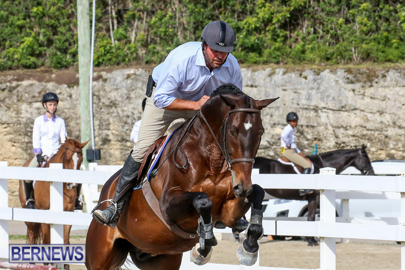 RES-Horse-Show-Bermuda-January-21-2017-71