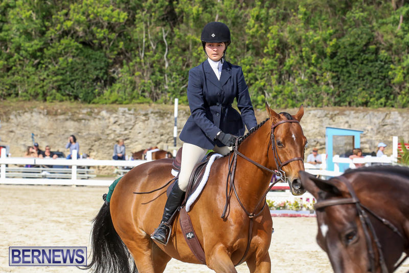 RES-Horse-Show-Bermuda-January-21-2017-72